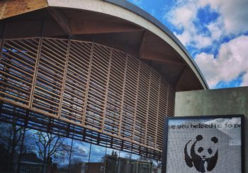 Walking tour of the WWF Living Planet Centre
